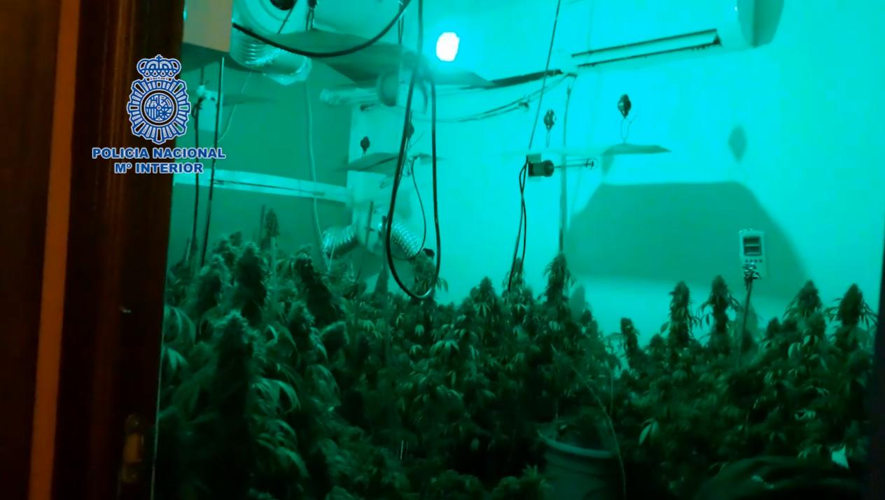 habitacion-marihuana