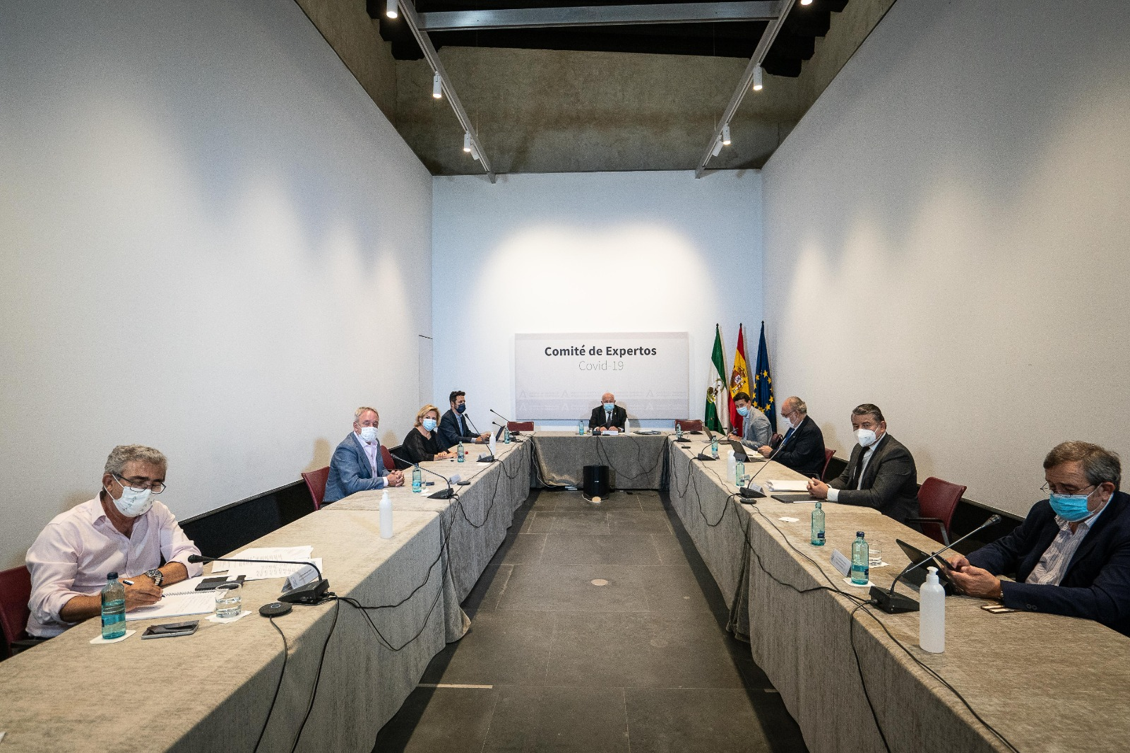 comite-expertos-andalucia
